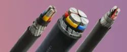 LT PVC and XLPE Power Cable