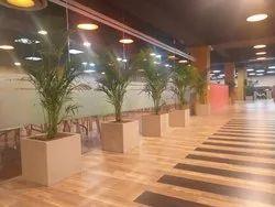 16 x 16 x 16 inch Plastic Garden Planters
