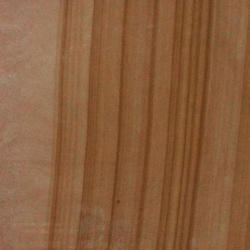 Camel Brown Sandstone