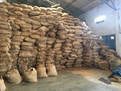 Pramoda 1 Year Cotton Seed Meal, Grade: Feed Grade ...