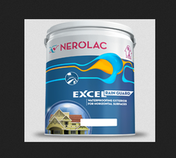 Nerolac Exterior Wall Paint
