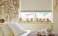 Plain Roller Window Blinds