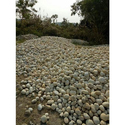 River Pebbles, For Landscaping