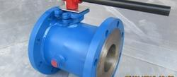 Steam Jacket Globe Valve