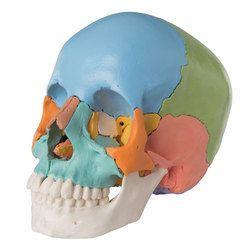 3B Skull Kit 22 - Parts