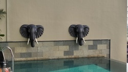 Elephant Spout For Swimming Pool