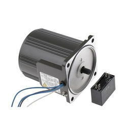 25 Watts AC Motor