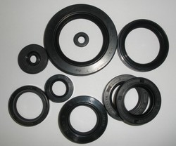 Seal Set for Hydraulic Machinery