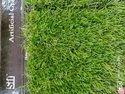 Artificial Grass Carpet