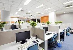 Plant Rental Service 100 Plant