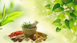 Ayurvedic PCD Pharma  Franchise for Himachal