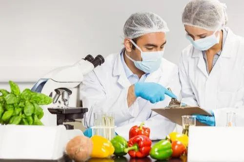 Food Product Testing Course