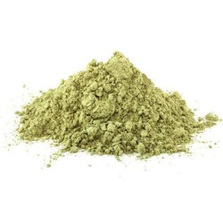 Acacia Arabica Powder