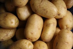 Brown A Grade Potato, Packaging Type: Jute Bag, Packaging Size: 20 kg