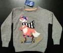 Boys Embroidered Sweatshirt