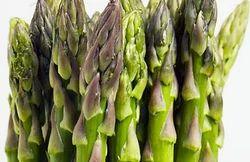 Organic Asparagus Vegetable