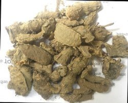 Dried Karchura