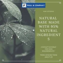 NTRLB - Natural Base With 95% Natural Ingredients