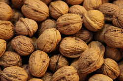 Walnuts, Packaging Type: Sacks, Packaging Size: 25 Kg