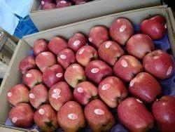Himachali A Grade Apples, Packaging Type: Carton