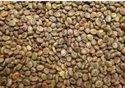 Kher Seed