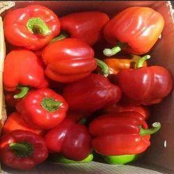 Red Capsicum, Packaging: Plastic Bag or Polythene, No Preservatives