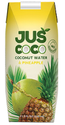 Tropical Fruit Pineapple With Coconut Combination Beverage, Packaging Size: 330 Ml