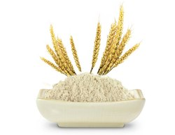 Rice Protein Concentrates, 25 Kg
