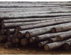 timber wooden poles Manufacturer and Supplier