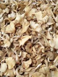 Dry Oyster Mushroom, Packaging Size: 5 kg