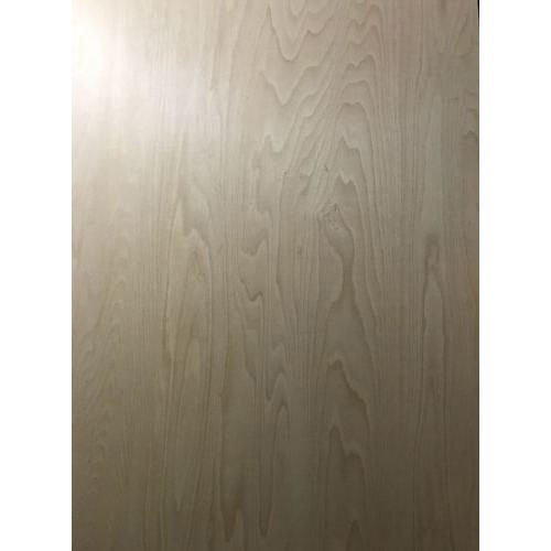 Steam Beech Plywood, Thickness: 10 To 3 0mm, Grade: MR,BWP