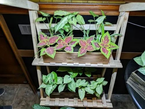 Natural Wooden Planter Stand