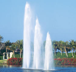 Vertical Jet Fountains