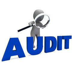 Vendor Audit Services