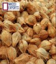 Nikosi Pollachi A Grade Brown Fresh Coconut Intamil Nadu, Size Available: Large