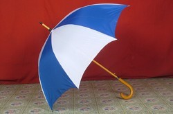 Hand Held Umbrellas