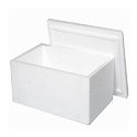 Thermocol Storage Box