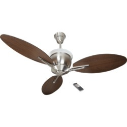 Florina Ceiling Fan (Havells)