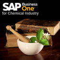 Chemical Industry Sap Business One Implementations Service