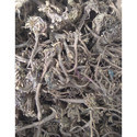 Dried Akarkara Root