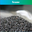 Sortex Clean Black Sesame