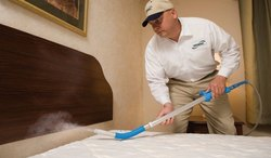 Bed Bug Pest Control Service