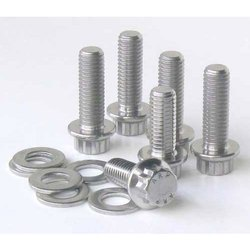 Duplex Steel Screw