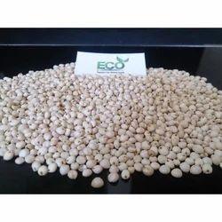 Indian Eco Juwar Sorghum (Jowar), Packaging Type: 25, 50 Kg Pp Bag, High in Protein