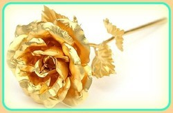 Rose Wardia Water Soluble Fragrance