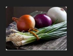 Bulb Vegetables