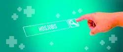 Health Care Job Portals Services