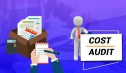 Lifetime Statutory Cost Auditing Services, Business Industry Type: Company And Firm, Jaipur