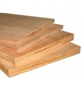 Greenply Brown Ecotec Plywood, Thickness: 24 Mm