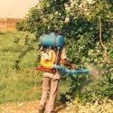 Pest Control Consultancy Service